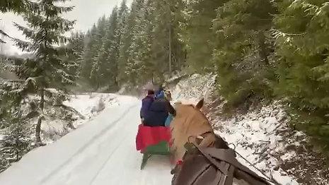In muntii Harghitei