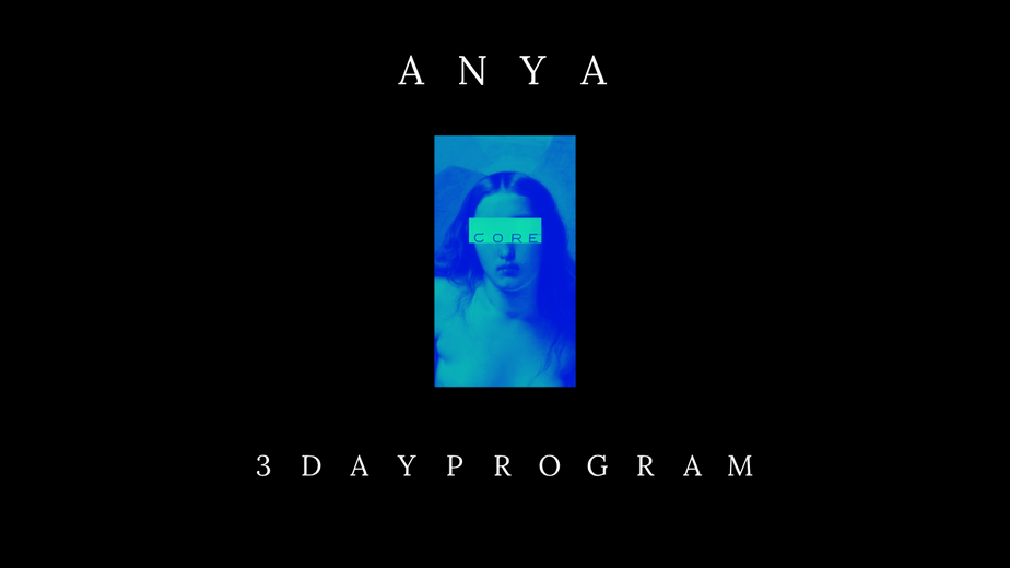 ANYA'S 3 DAY WORKOUT PROGRAM