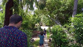857 Seaview Drive, El Cerrito - Garden