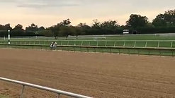 *Rathowan Track Work - Fall 2017 at Delaware Park