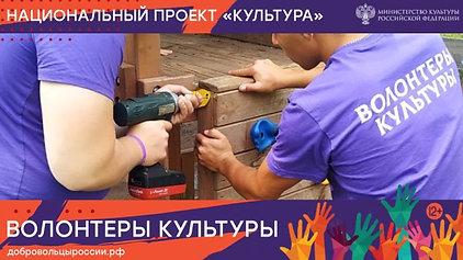 Волонтеры культуры