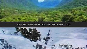 Mind // Brain