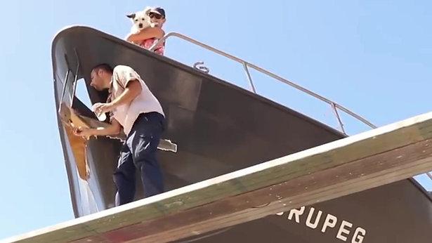 Crew Video