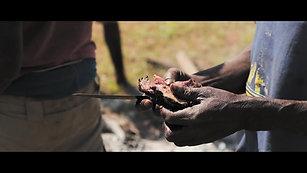 A Cabassa Safaris Story