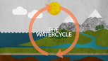 The Water Cycle •Science in 60 Seconds