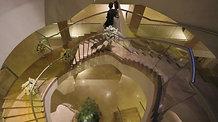 Promo - Hilton Heliopolis Weddings Season