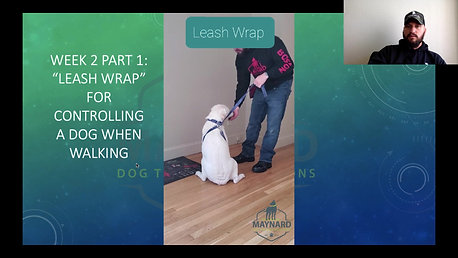 Leash wrap
