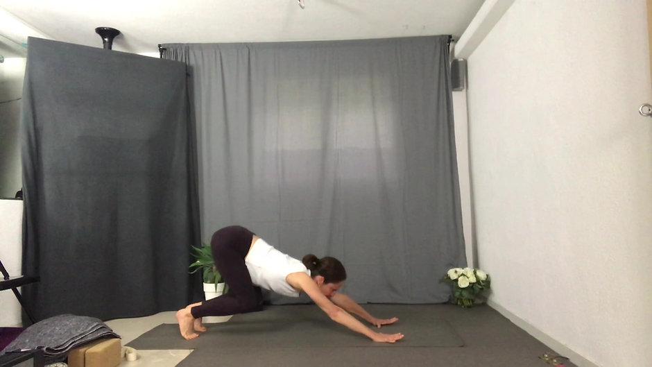 Full Yoga class (90min)