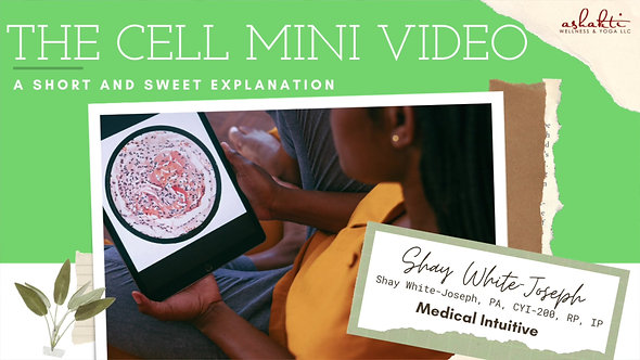 The Cell Mini Video