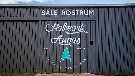Hallmark 2021 Bull Sale Preview