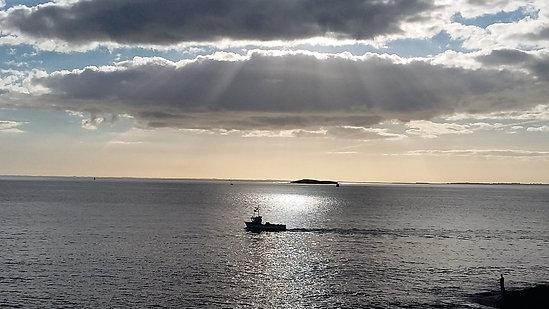 L'île des égarés
