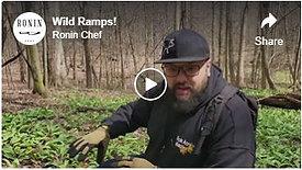 Wild Ramps!