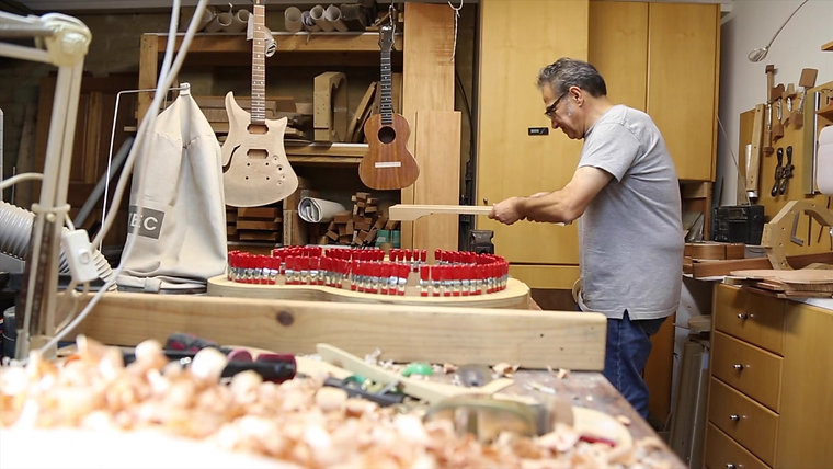 The Delm Guitar  Story