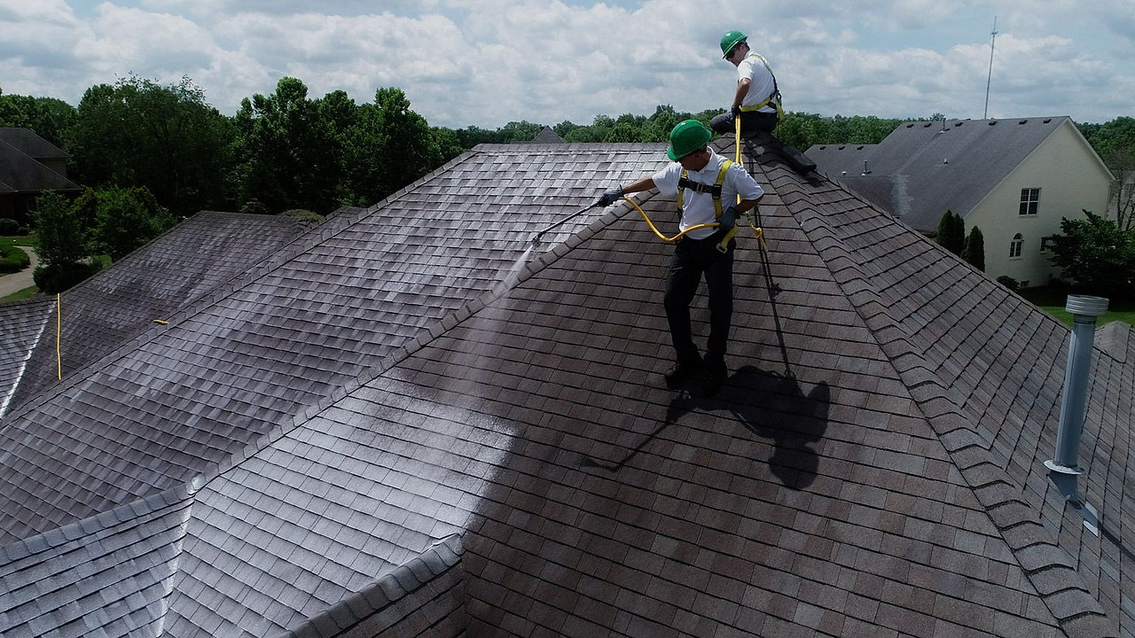 The World's First All-Natural Roof Maintenance Spray Treatment
