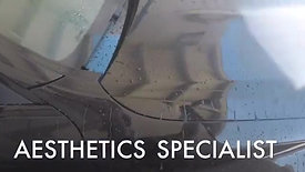 Automotive Aesthetics Specialist