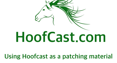 Using HoofCast as a patching material