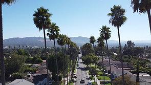 Grandview palms