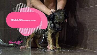 2 in 1 Shampoo & Conditioner