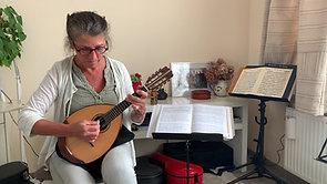Tokkelinstrumenten - Mandoline
