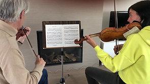 Strijkinstrumenten - Viool