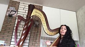 Tokkelinstrumenten - Harp