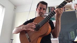 Tokkelinstrumenten - Gitaar Flamenco