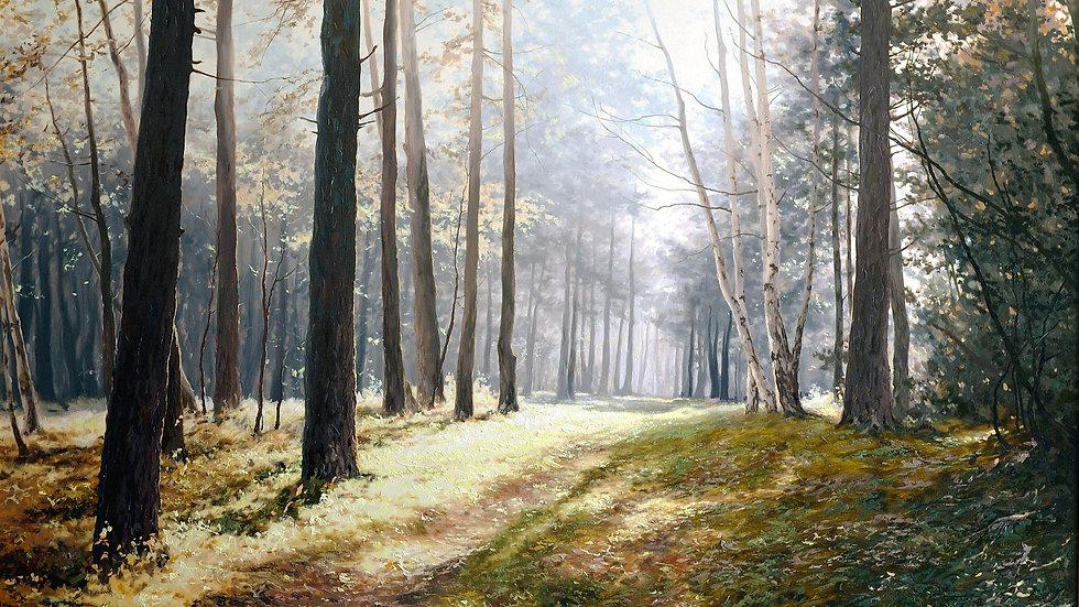 Солнце в лесу, мастер класс Алексея Адамова