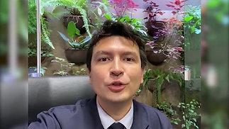 Dr. Henrique Taniguchi
