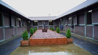 Equine Massage Academy