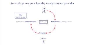 Identity Cycle