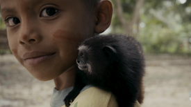 Qué habita en la selva? | Teaser