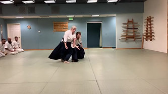 Aikido Class for Adults