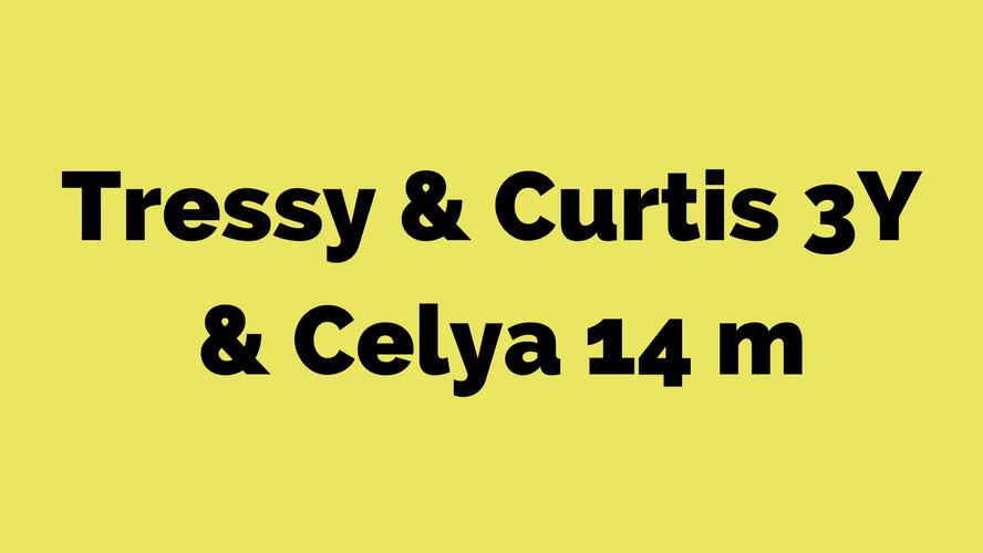 Tressy - Curtis 3Y - Celya 14M