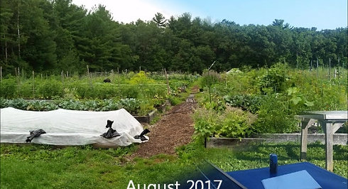 2017 NCF Time Lapse