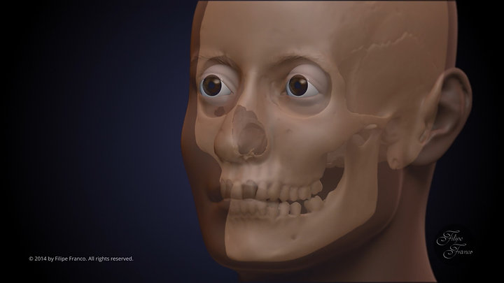 Facial Approximation of Subject B