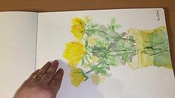 Landscapes sketchbook 9 - 2020