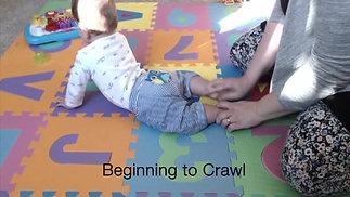 Beginning to Crawl