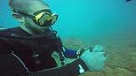 Black coral sampling Lucas Terrana