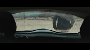 LTH. Director: Georgi Banks-Davies