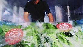 From Farm To Supermarket: The Journey Of A Local Bok Choy