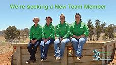 The Mobile Vet Team is seeking a new team member