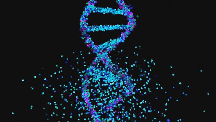 DNA_MASH