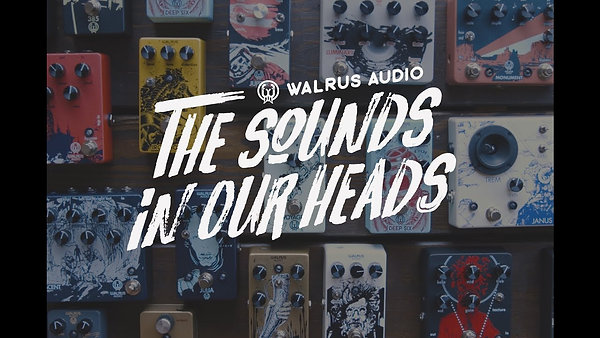 Walrus Audio: The Sounds In Our Heads