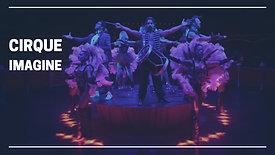 Cabaret-Cirque : un show unique à Lyon