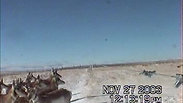 Antelope Clip 2