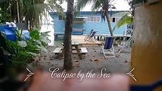 ALIPSO BY THE SEA,MEDIUM
