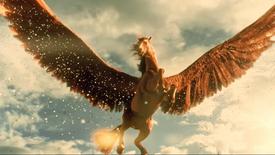 ปุ๋ยตราม้าบิน 'พลังม้า - ข้าว , ข้าวโพดและปาล์ม'