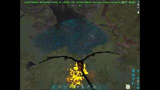 QAZ - Gilled Shadowed Phoenixkin Wyvern