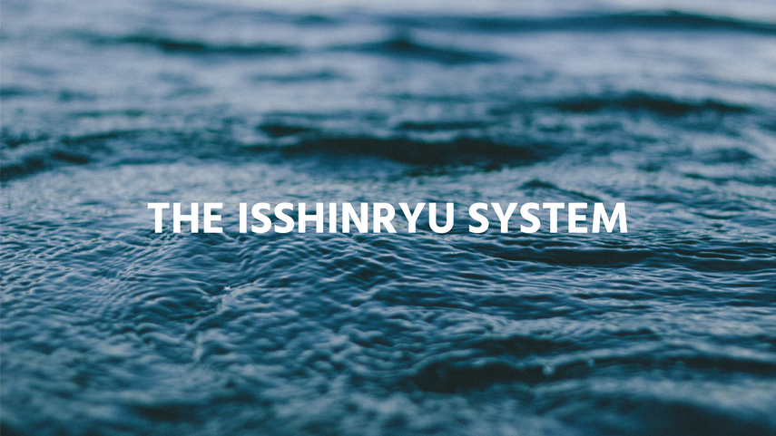 The Isshinryu System