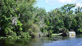 River Life Rentals- Tour